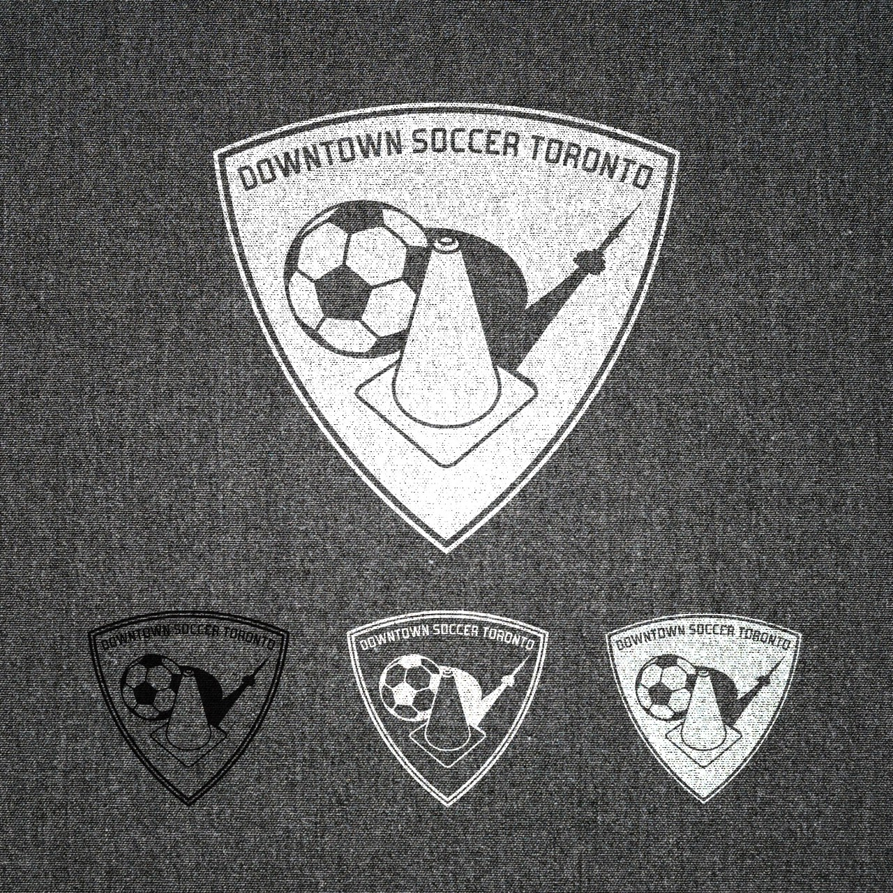 Image of Downtown Soccer Toronto logo inverted application